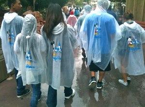 Disney Parks Ponchos
