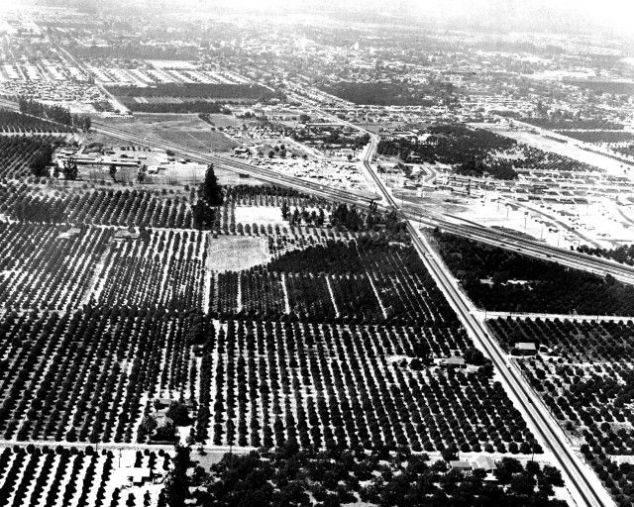 The land where Disneyland was built